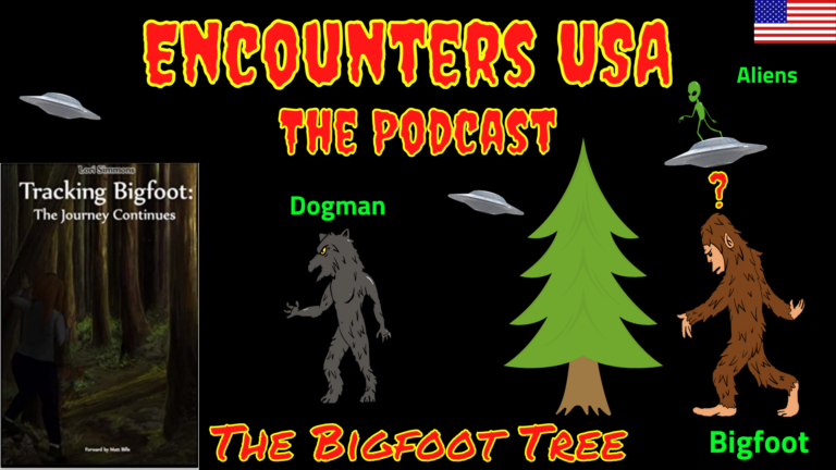 Bigfoot Tree Updates Are They Really Just Cold Feet & Old Info?
